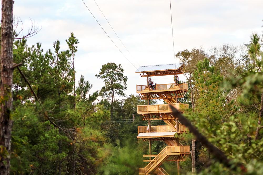 Falcon Flight Zipline Tower